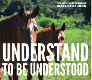 01-understand-to-be-understood