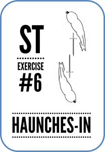 haunches-in-weapon-line