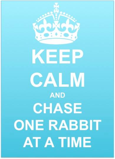 keep-calm-one-rabbit