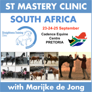 st-mastery-clinic-south-africa
