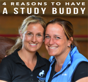 4-reasons-to-have-a-study-buddy